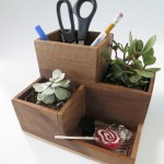 DIY Planter & Pen Cup