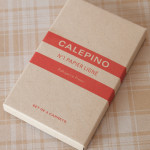 Notebook: Calepino Pocket Books